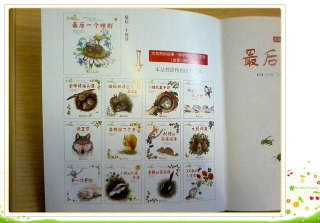 童话故事动物_小动物的童话故事